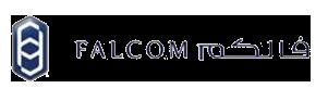 Falcom Financial Services